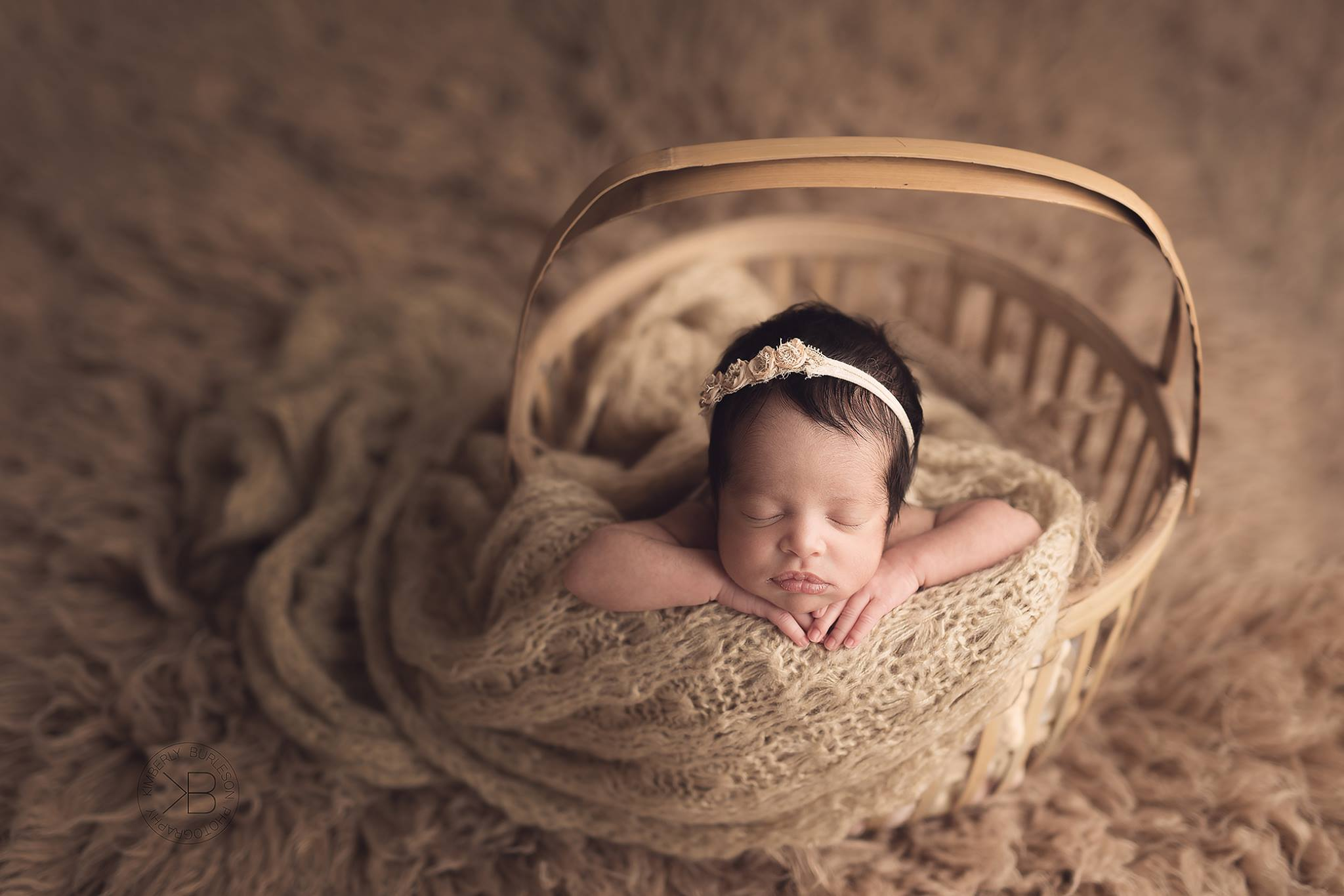 best newborn photographer in houston