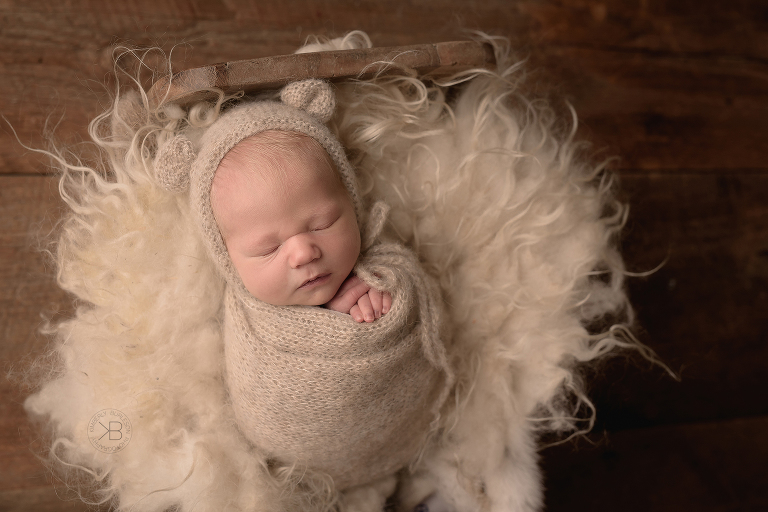 Houston Newborn Studio Photographer