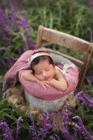 who is the best newborn photographer