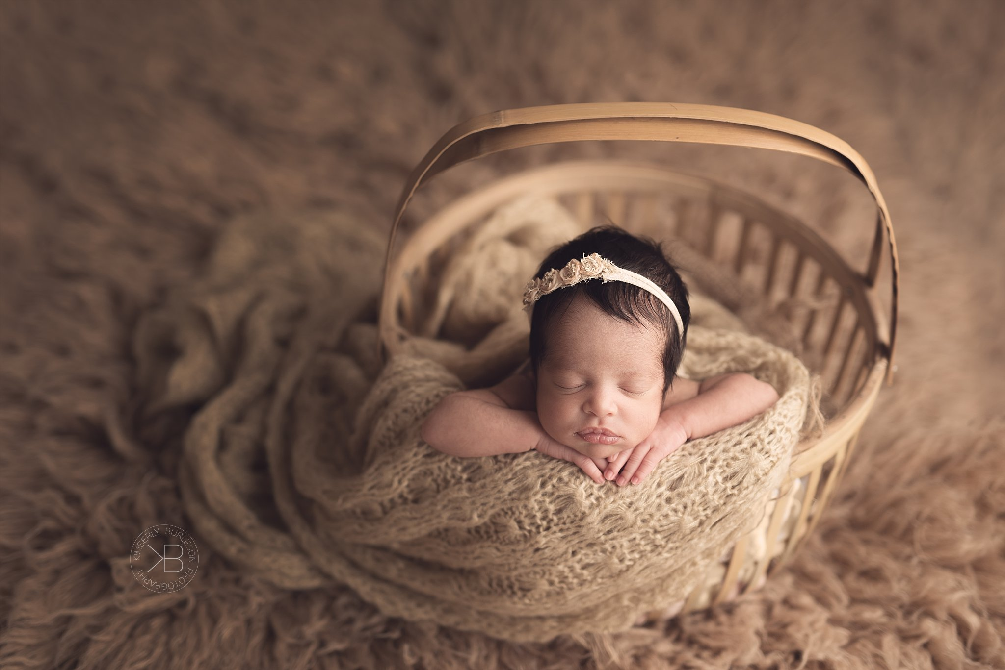Longmeadow Farms Richmond Newborn Photography Specialist